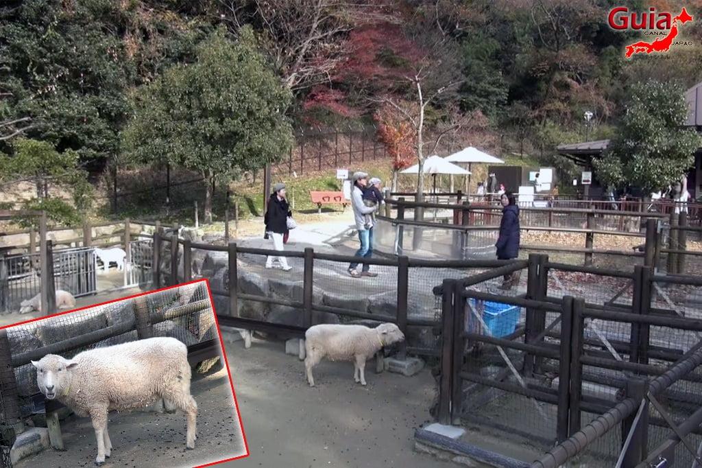 Okazaki East Park - Higashi Koen y 7 Zoo