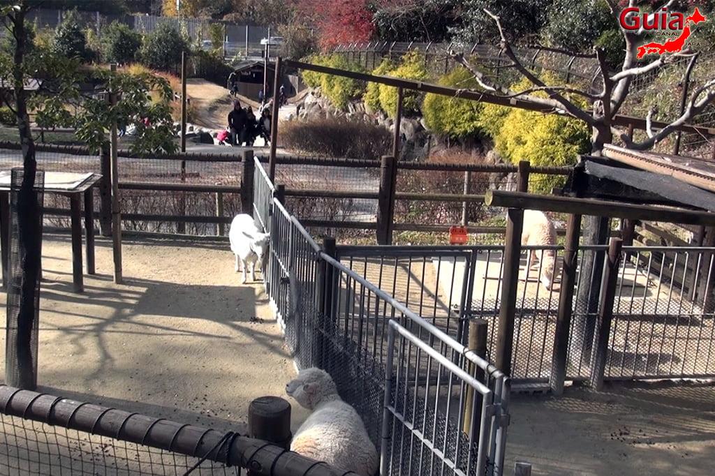Okazaki East Park - Higashi Koen y 6 Zoo