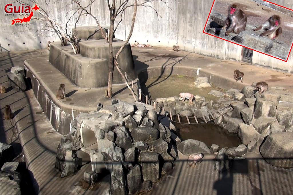 Okazaki East Park - Higashi Koen y 2 Zoo