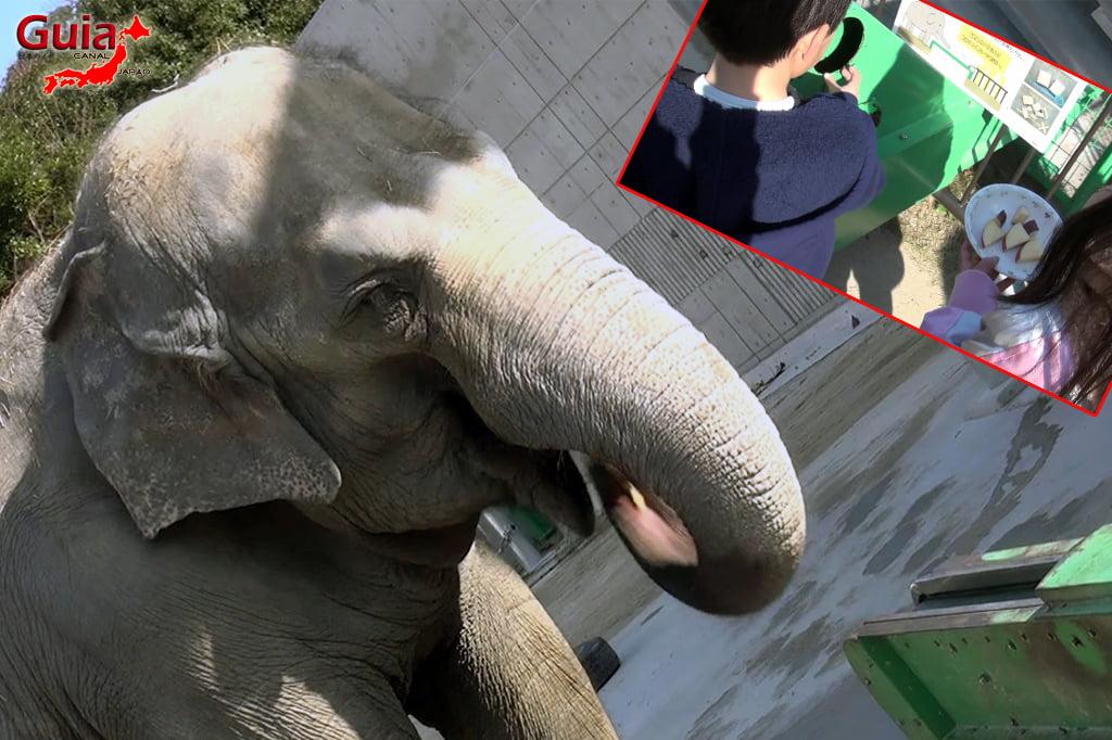 Okazaki East Park - Higashi Koen y 13 Zoo