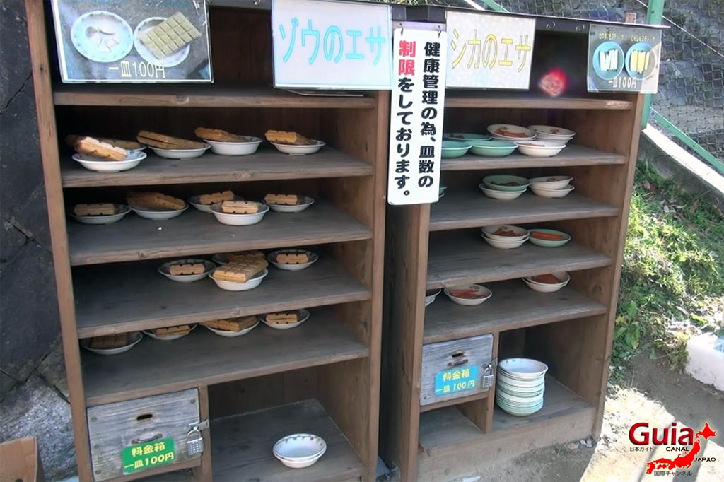 Parque Leste de Okazaki – Higashi Koen & Zoológico 10