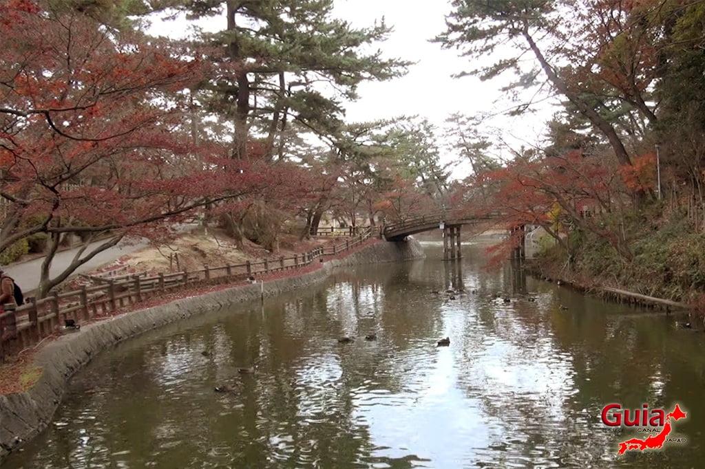 Parque Leste de Okazaki – Higashi Koen & Zoológico 31