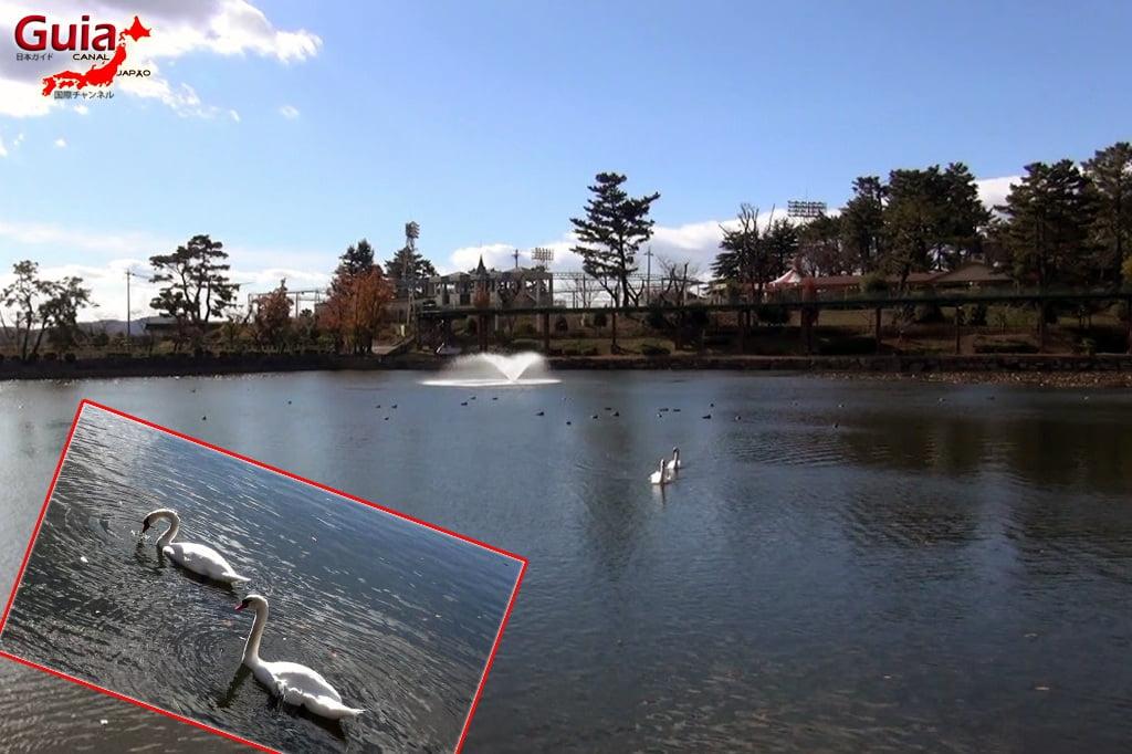 Timog Okazaki Park - Minami Koen 8