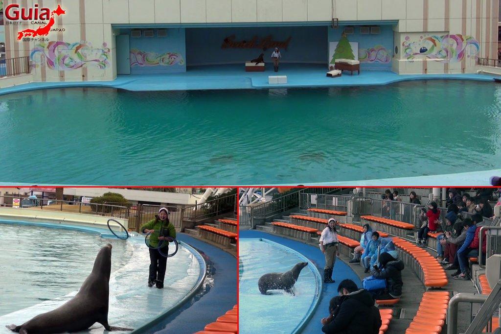 Aquário Minami Chita Beach Land / Parque de Diversão Toy Kingdom 24