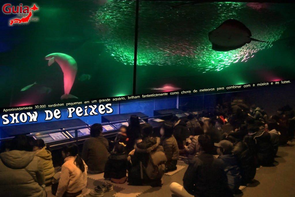 Minami Chita Beach Land Aquarium / Taman Hiburan Toy Kingdom 26