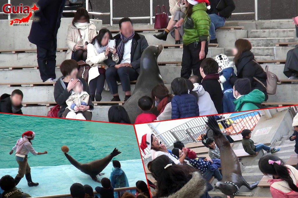Minami Chita Beach Land Aquarium / Taman Hiburan Toy Kingdom 22