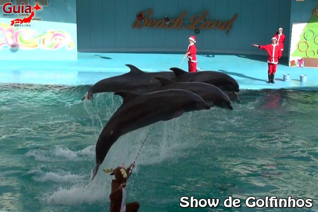 Minami Chita Beach Land Aquarium / Taman Hiburan Toy Kingdom 18