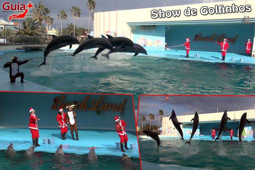 Minami Chita Beach Land Aquarium / Taman Hiburan Toy Kingdom 16