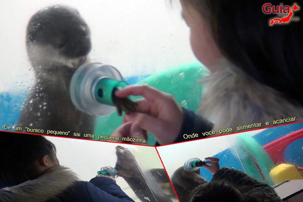 Minami Chita Beach Land Aquarium / Taman Hiburan Toy Kingdom 15