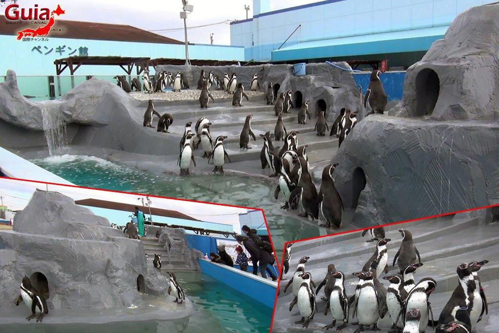 Minami Chita Beach Land Aquarium / Taman Hiburan Toy Kingdom 13