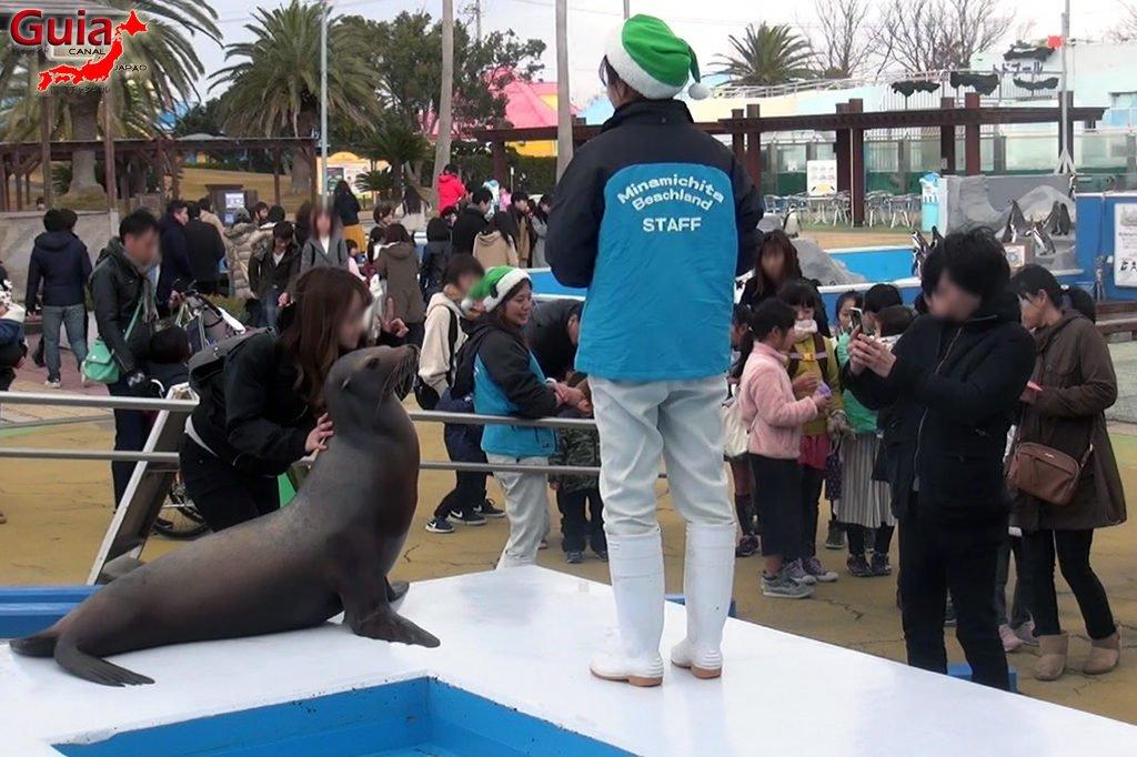 Aquário Minami Chita Beach Land / Parque de Diversão Toy Kingdom 10