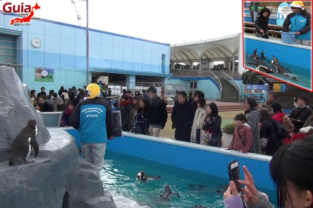 Aquário Minami Chita Beach Land / Parque de Diversão Toy Kingdom 8
