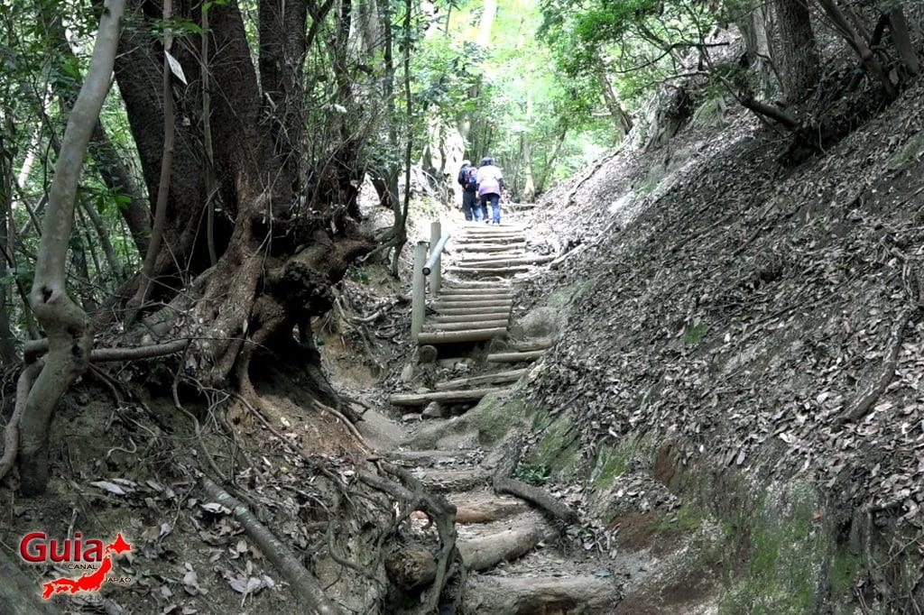 猿投山-トヨタ12