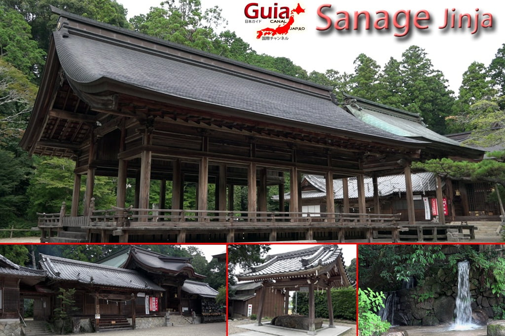 Monte Sanage - Toyota 2