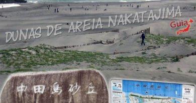 Dunas de Areia Nakatajima – Hamamatsu 27