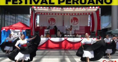 Festival peruano de Hamamatsu 34