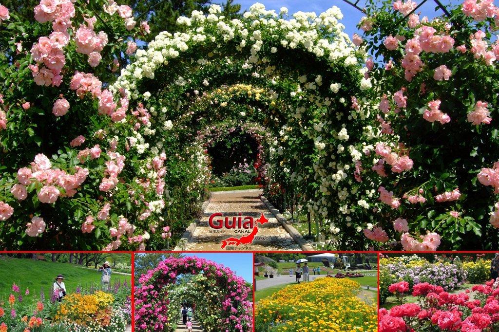 Parque de flores Hamamatsu - Parque de flores 21