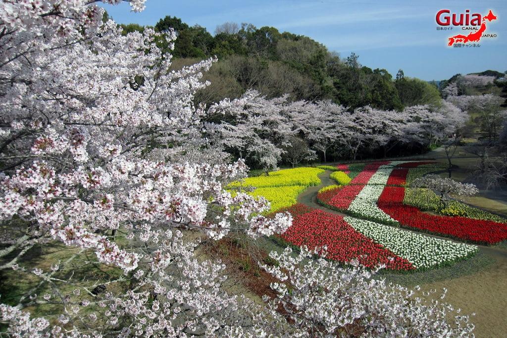 Parque de flores Hamamatsu - Parque de flores 23