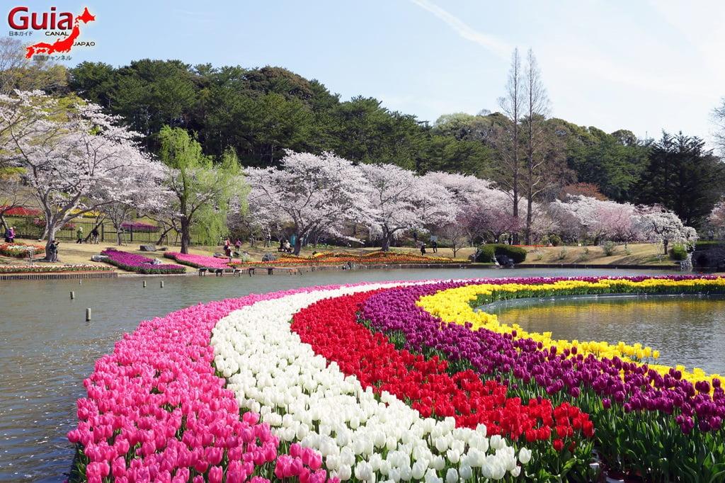 Parque de flores Hamamatsu - Parque de flores 27