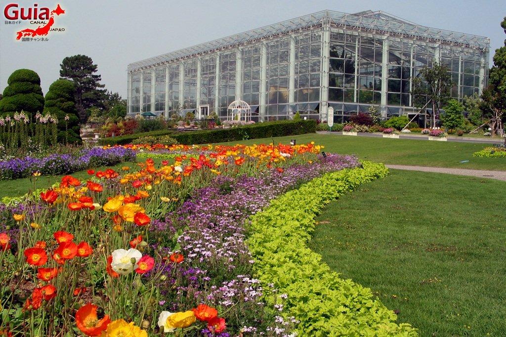 Parque de flores Hamamatsu - Parque de flores 6