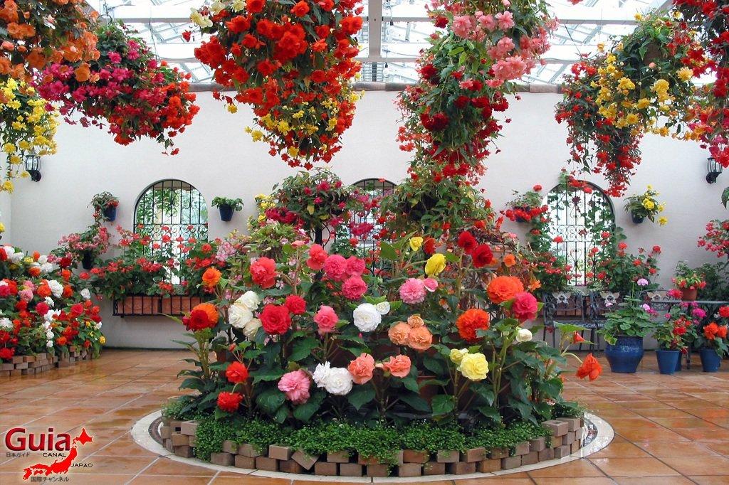 Parque de flores Hamamatsu - Parque de flores 8