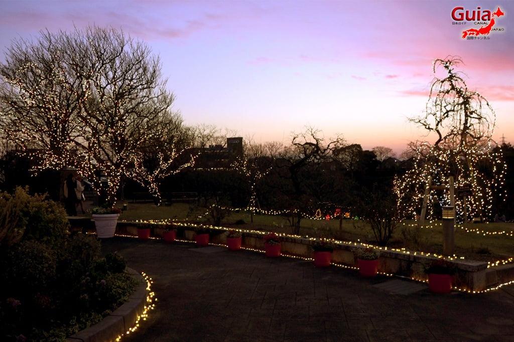 Parque de flores Hamamatsu - Parque de flores 142