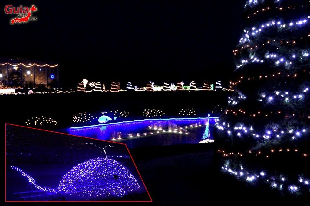 Цветочный парк Хамамацу 12 Lighting