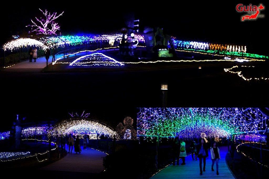 Цветочный парк Хамамацу 15 Lighting