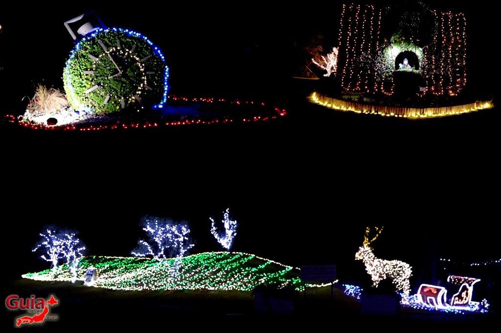 Цветочный парк Хамамацу 16 Lighting