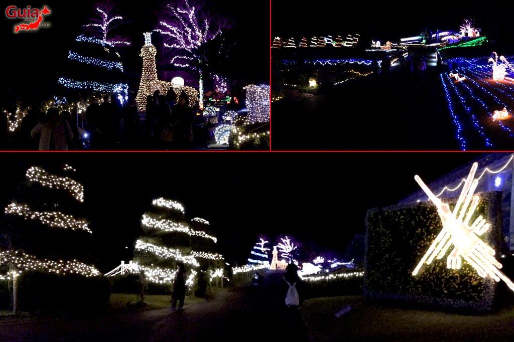 Цветочный парк Хамамацу 17 Lighting