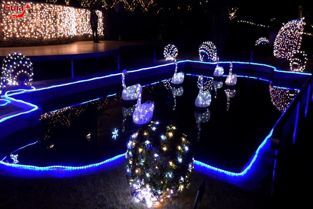 Цветочный парк Хамамацу 18 Lighting