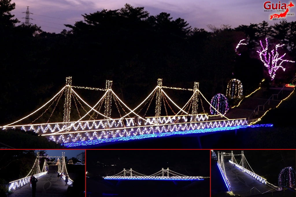 Цветочный парк Хамамацу 5 Lighting