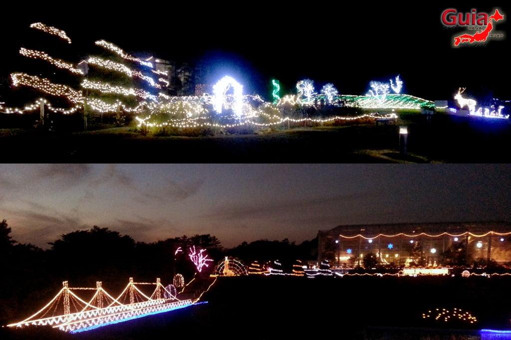 Цветочный парк Хамамацу 6 Lighting