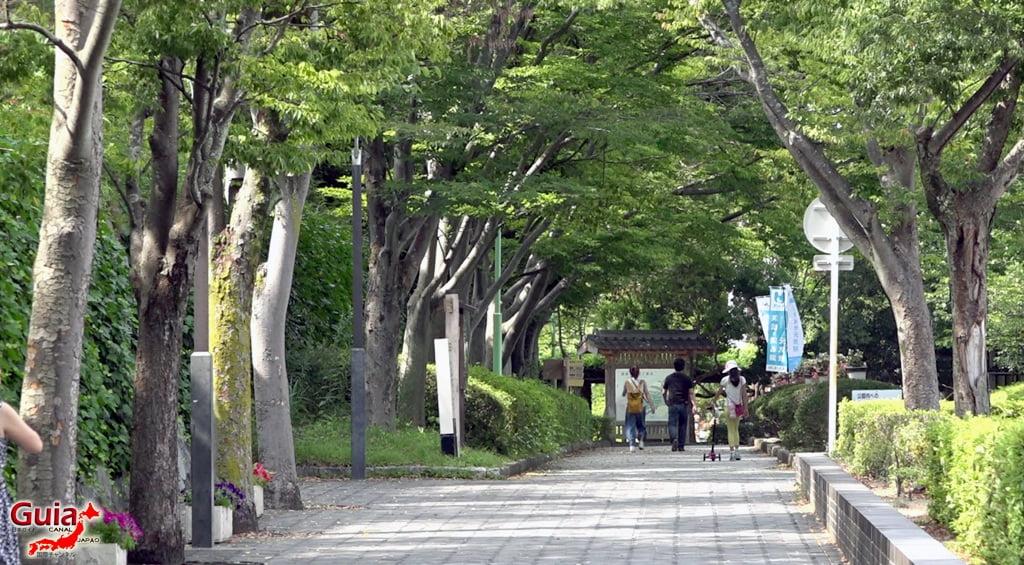 Hamamatsu Castle 16