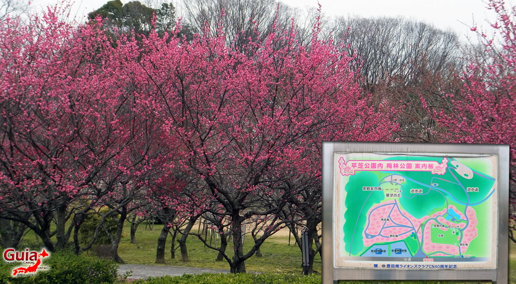 Parque Hirashiba - Ume (Festival de la flor del ciruelo) 19