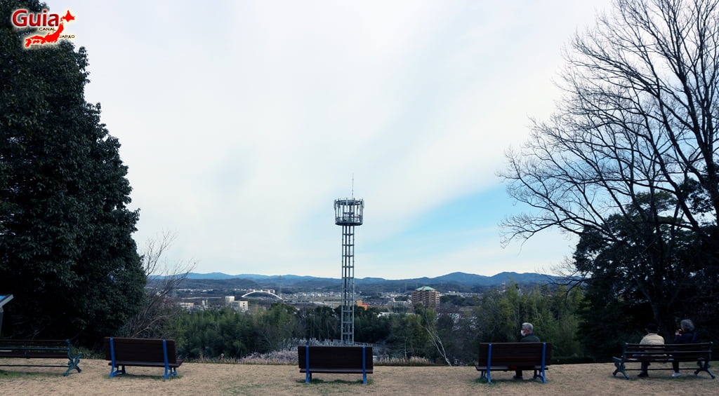 Hirashiba Park - Ume (Plum Blossom Festival) 28