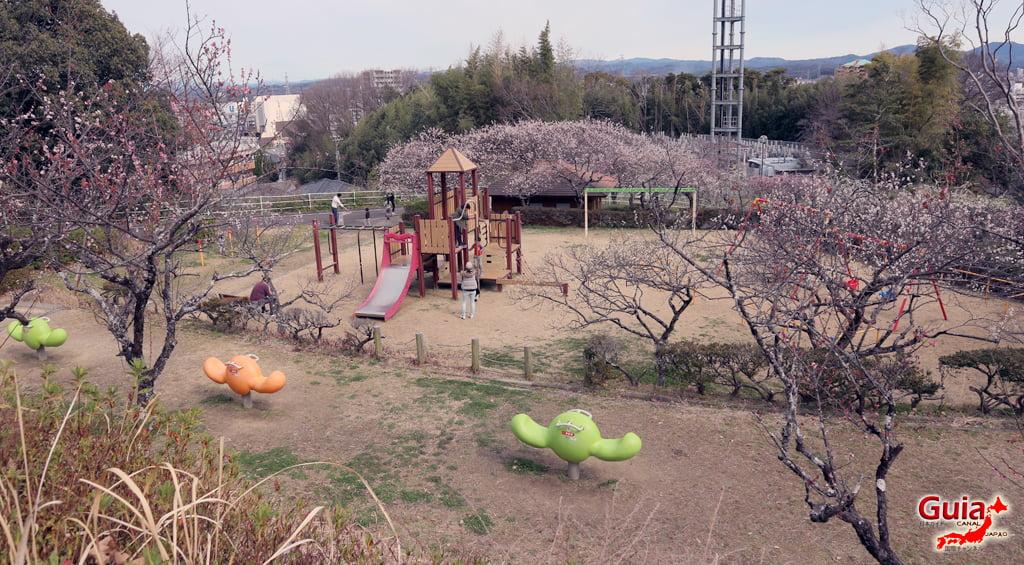 Hirashiba Park - Ume (Plum Blossom Festival) 31