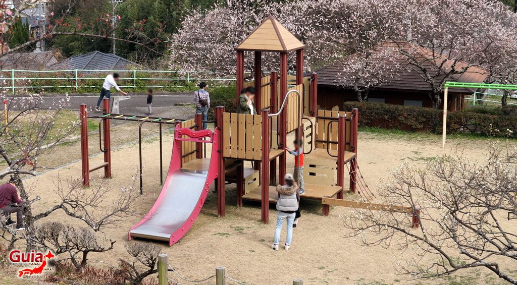 Parque Hirashiba - Ume (Festival de la flor del ciruelo) 33