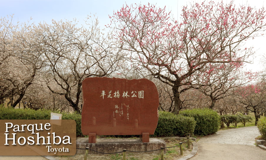 Parque Hirashiba - Ume (Festival de la flor del ciruelo) 1