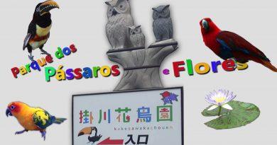 KakegawaKachouen - Parque dos Pássaros - Photo Gallery 79