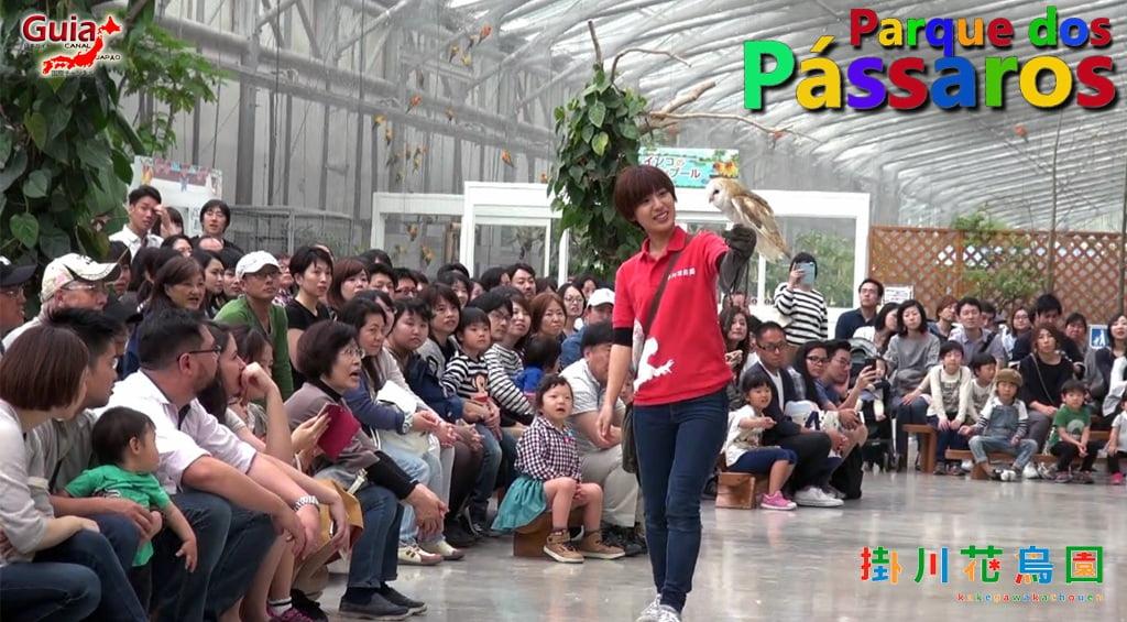 Photo Gallery de Estrangeiros nos Zoológicos do Japão 20