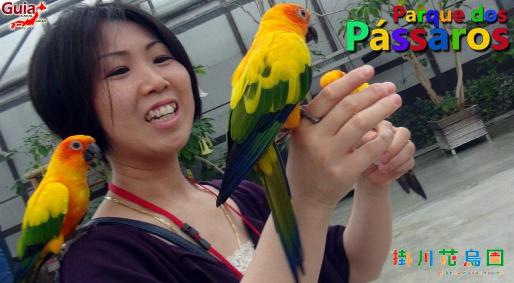KakegawaKachouen - Bird Park - Photo Gallery 29
