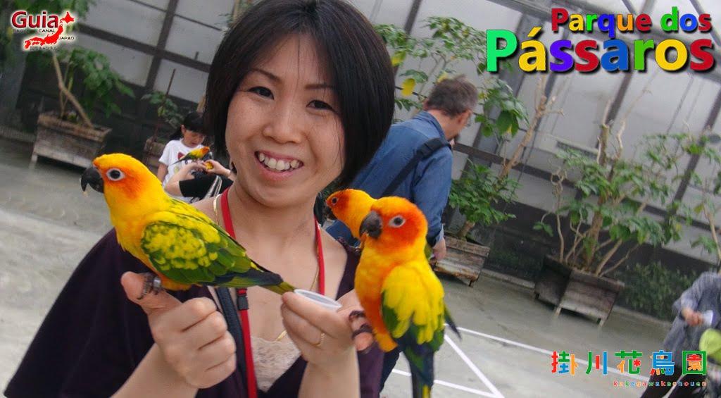 KakegawaKachouen - Bird Park - Galería de fotos 30