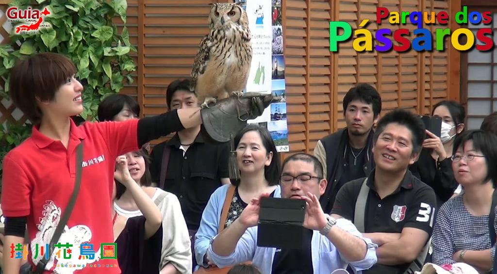 KakegawaKachouen - Bird Park - Galería de fotos 2
