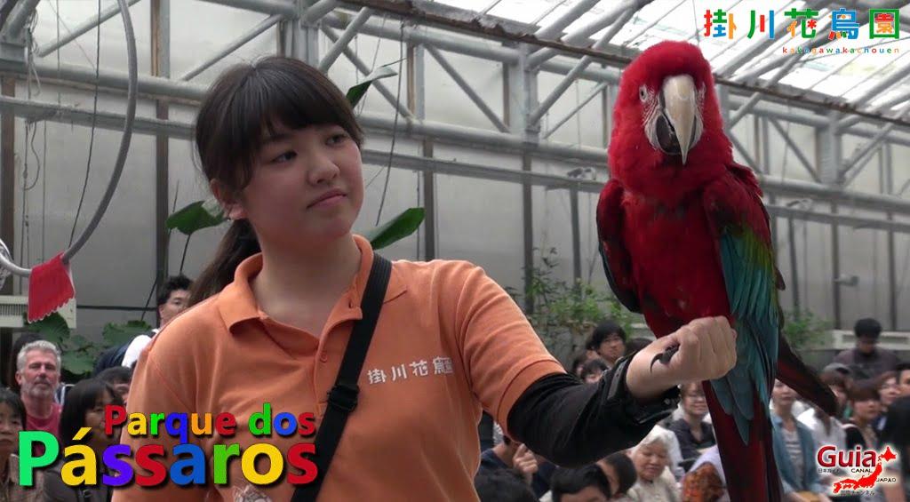 KakegawaKachouen - Bird Park - Photo Gallery 3