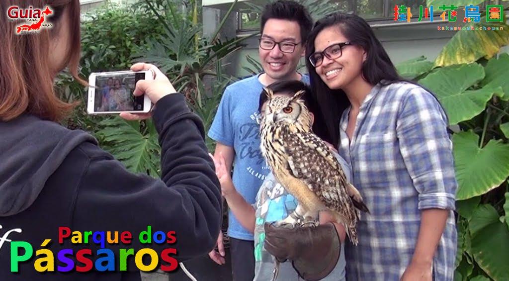 Photo Gallery de Estrangeiros nos Zoológicos do Japão 26