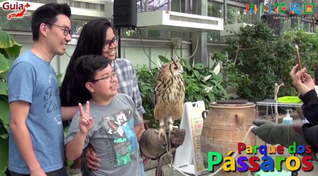 Photo Gallery de Estrangeiros nos Zoológicos do Japão 27