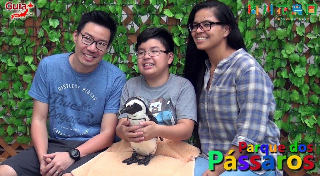 KakegawaKachouen - Bird Park - Galería de fotos 12