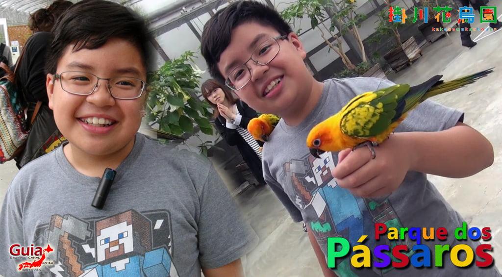 KakegawaKachouen - Bird Park - Photo Gallery 15