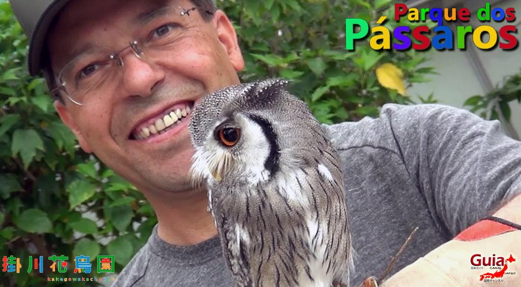 KakegawaKachouen - Bird Park - Photo Gallery 16